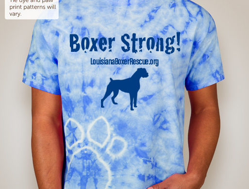 Be Boxer Strong